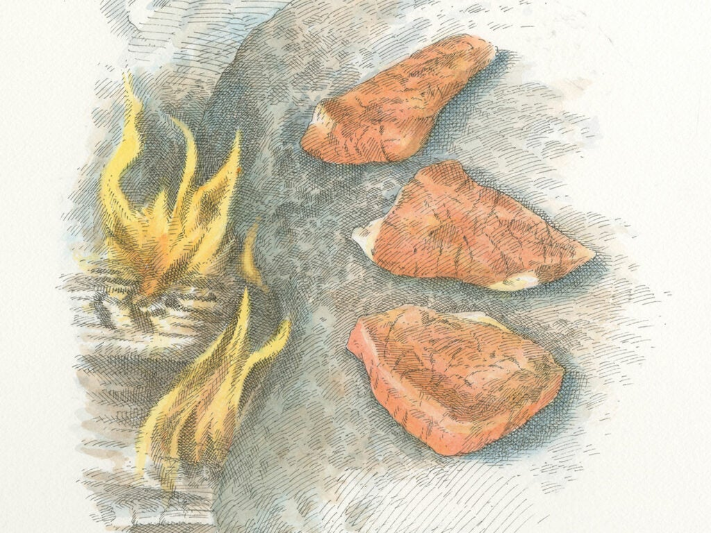 illustration of wild game meat near a fire