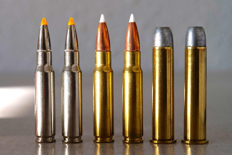 Battle of the Black Bear Cartridges: .308 Win. vs. .338 Federal vs. .45-70 Govt.