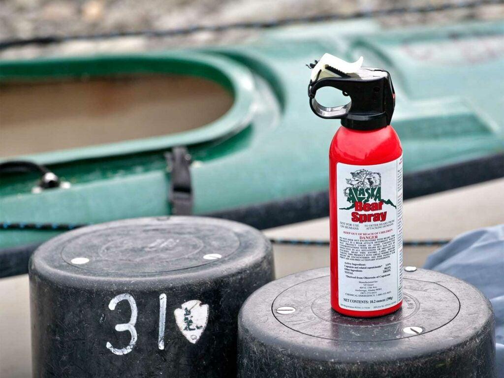alaska bear spray