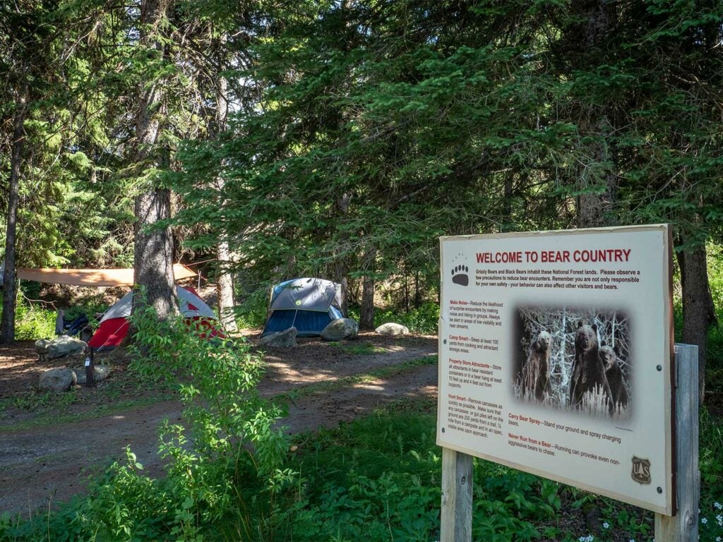 campsite in bear country