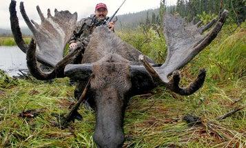 Moose Gun Face-Off: .243 Win. vs. .30-06 vs. .416 Rem. Mag.