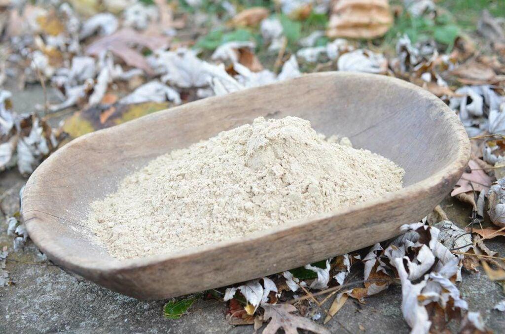 a bowl of acorn flour
