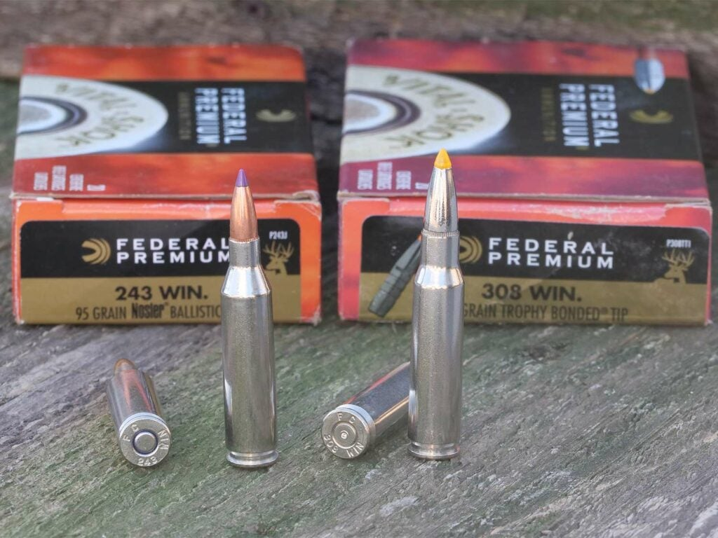 243 winchester and 308 winchester ammo