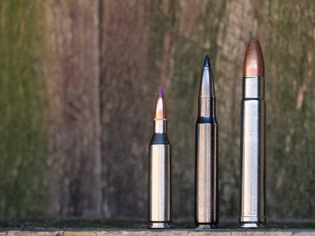 three ammo cartridges on a wood backdrop