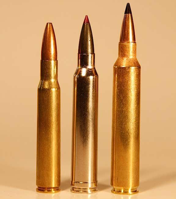 three rifle cartridges