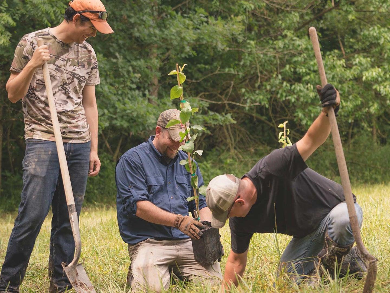 three hunters planting a tree