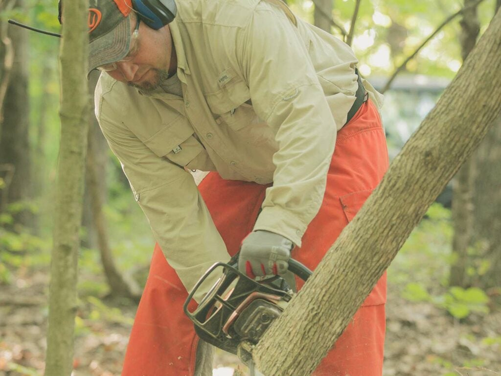 man using chainsaw on a tree