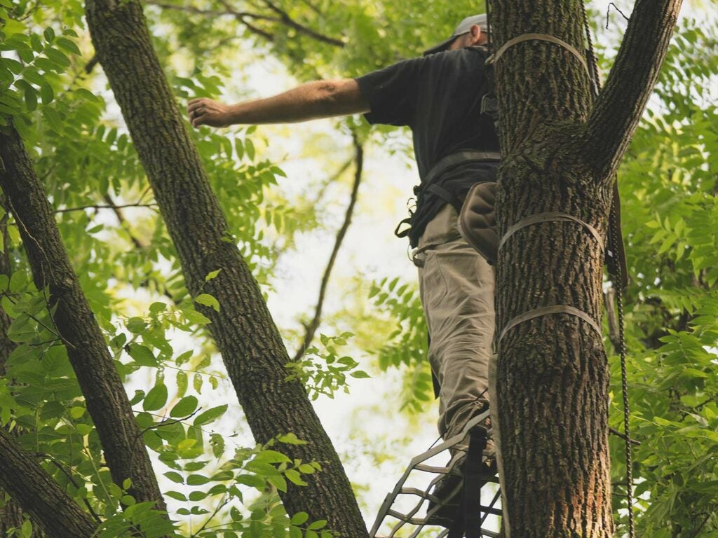 hunter in a tree stand practicing draw