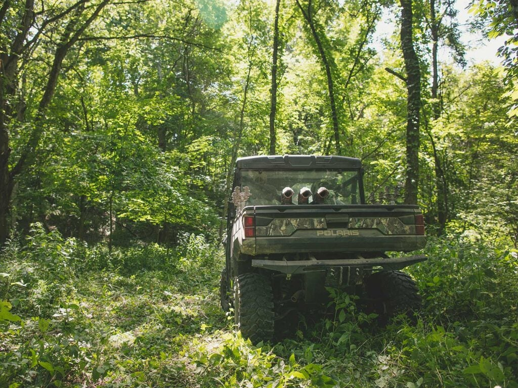 a polaris ranger in a wooded area