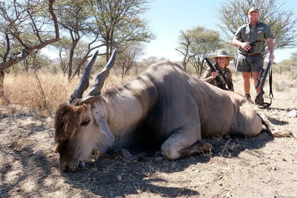 two hunters kneeling behind a giant pronghorn eland