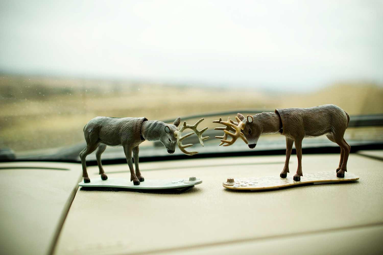 How to Plan a DIY Deer Hunting Road Trip