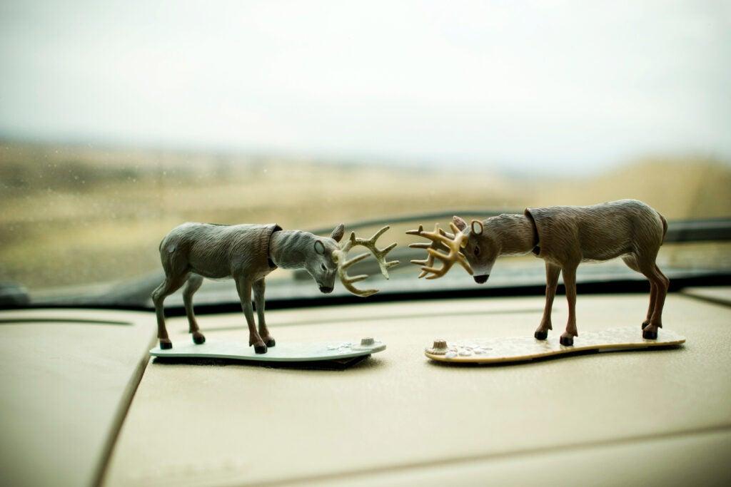 deer hunting road trip