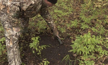 7 Best Ways To Use Scents During The Rut