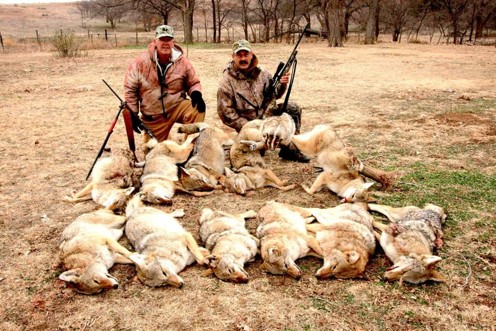 two hunters kneeling beside a pack of hunted coyotes
