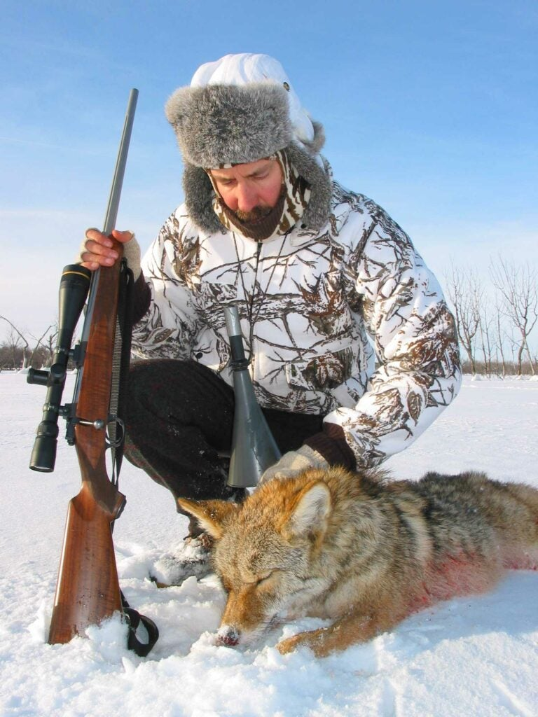 hunter kneeling next to a coyote in the snow