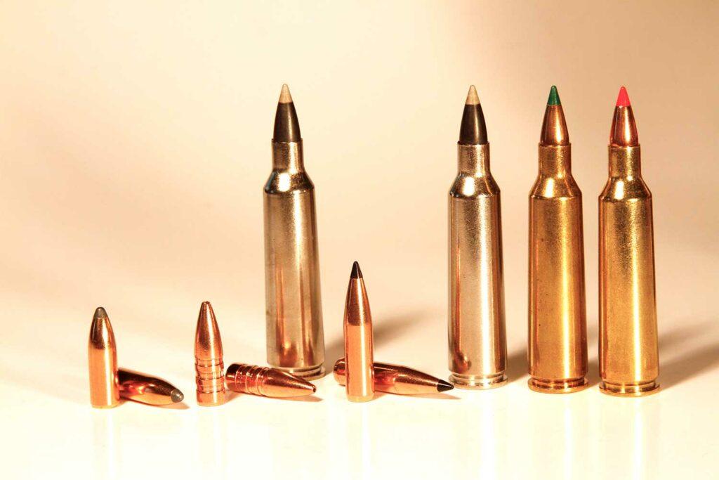 a lineup of 22 250 remington bullets