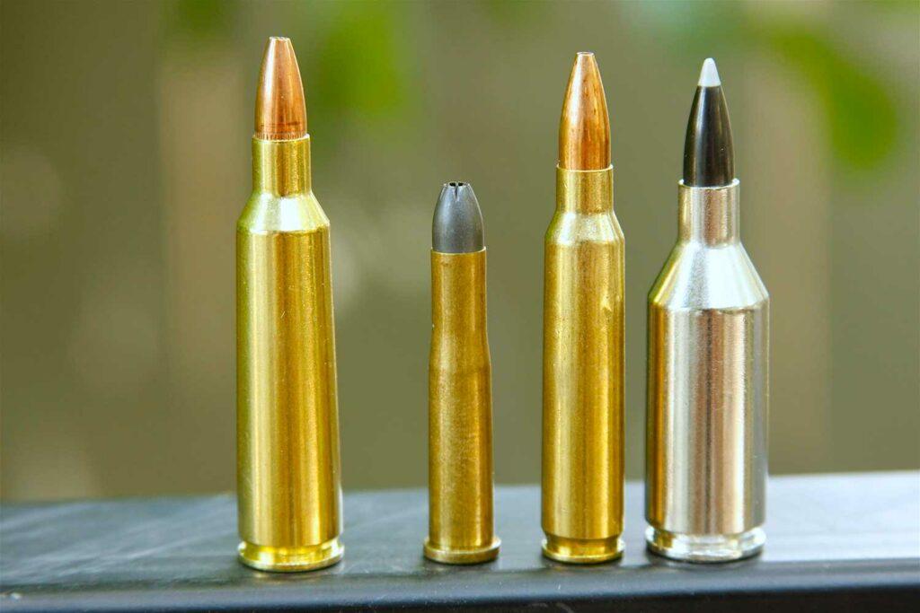 a lineup of centerfire 224 bullets