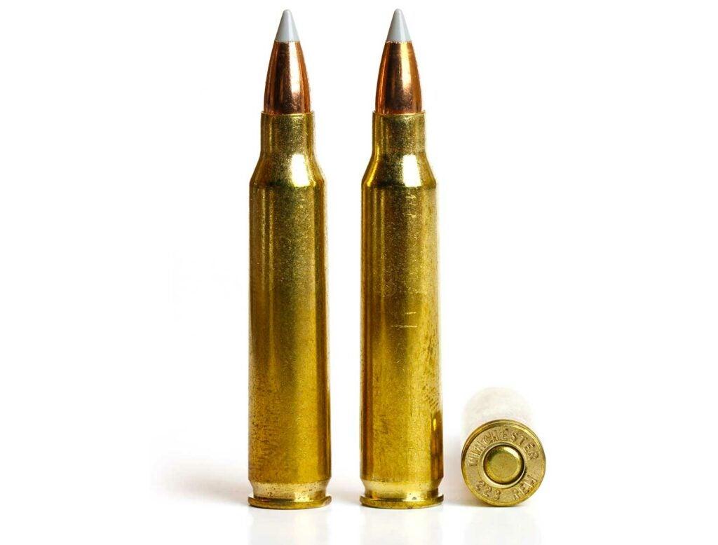 thre 223 remington bullets