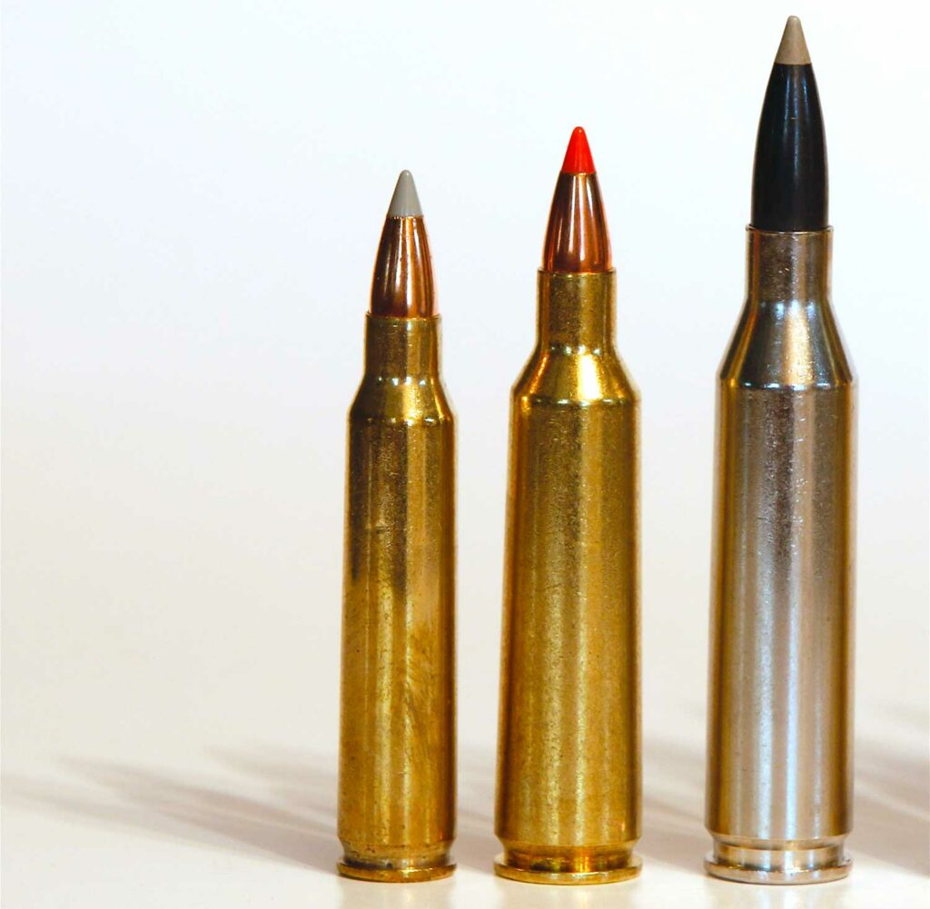 three rifle bullets for coyote