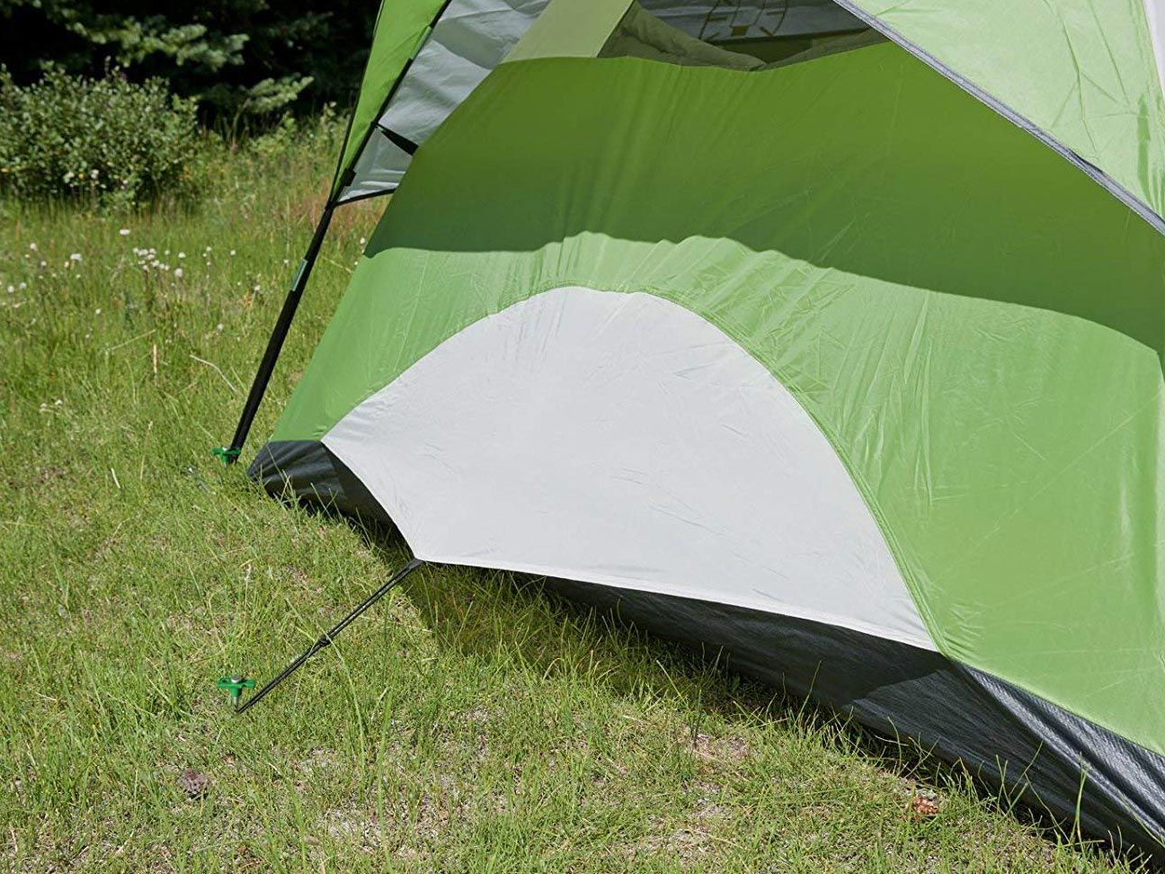 Green tent close up of stake