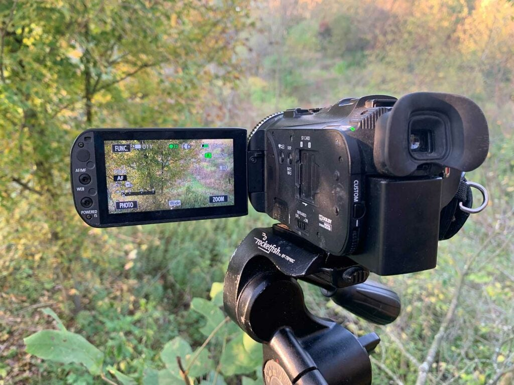a camera in a tree stand