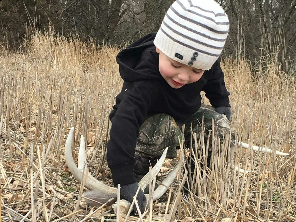 a child standing beside shed deer antlers