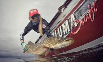 Early Winter is the Best Time to Catch Your Biggest Pike or Muskie on the Fly