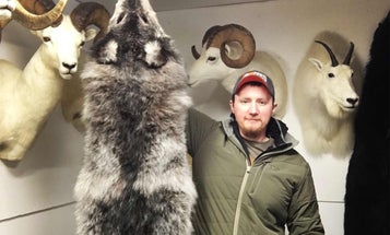 10 Lessons for First-Time Fur Trappers
