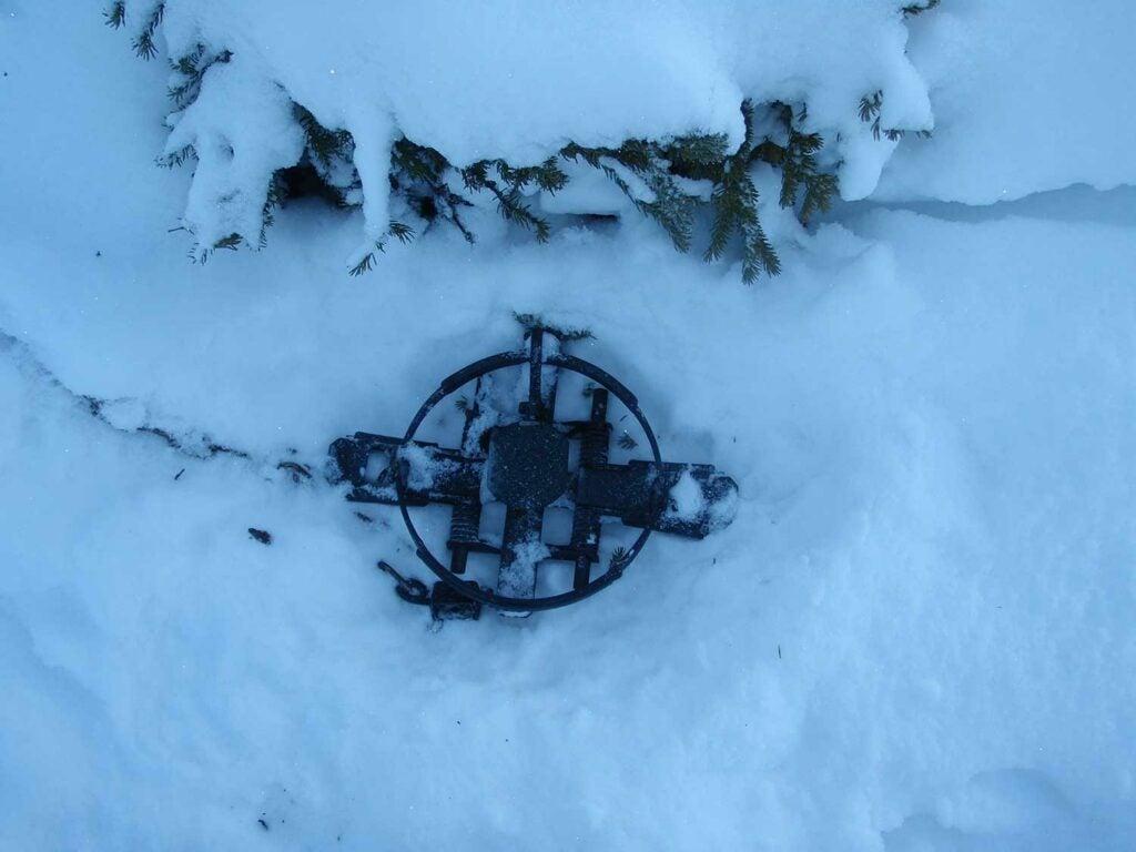 Alaskan #9 wolf trap in the snow.