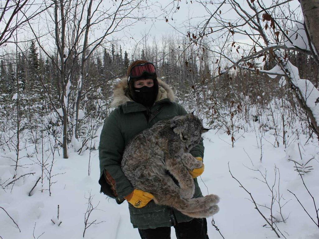 Hunter holding up a lynx in the snow.