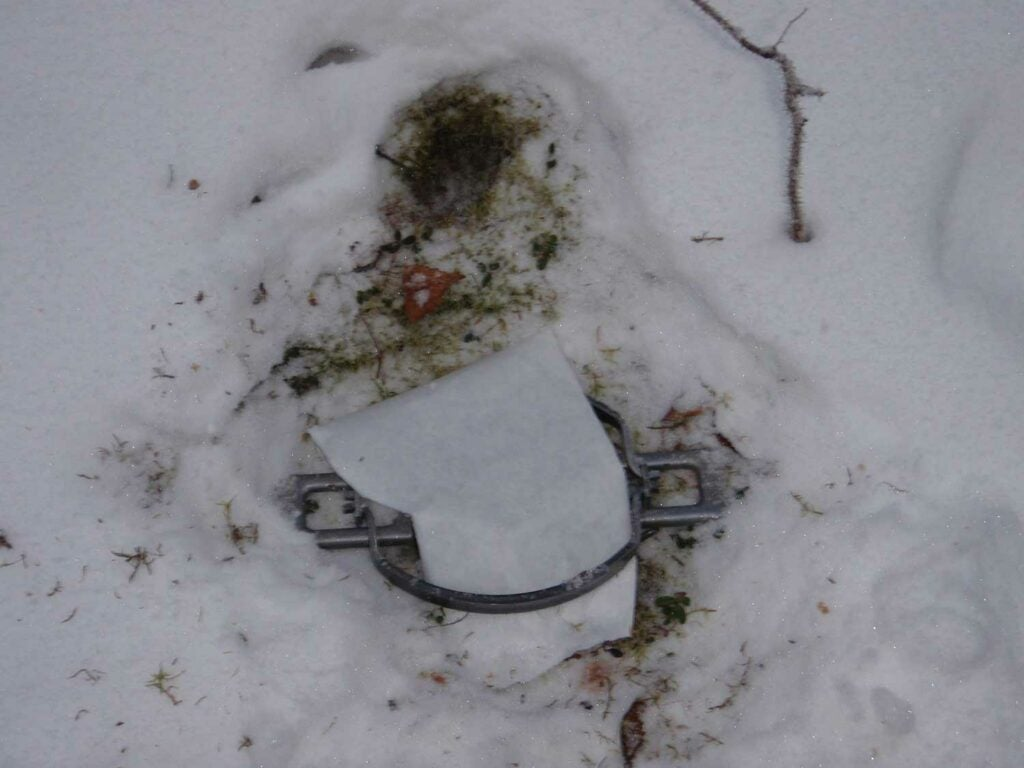 A dirt Hole set for fox, before being covered with snow.