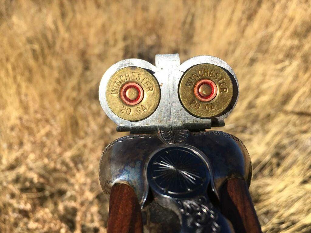 a loaded double-barrel shotgun