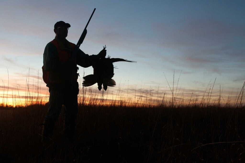 a silhouette of a hunter holding up pheasants.