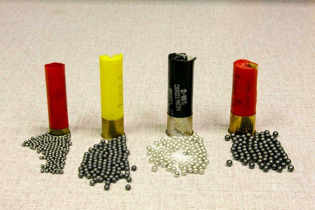 A lineup of shotgun shells and ammo pellets.