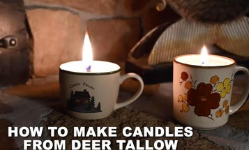 How to Make Candles Out of Deer Tallow
