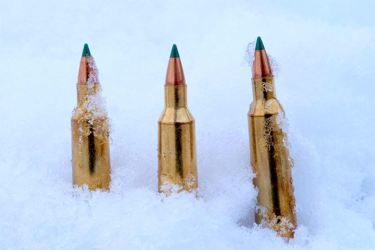 Rifle ammo in the snow.