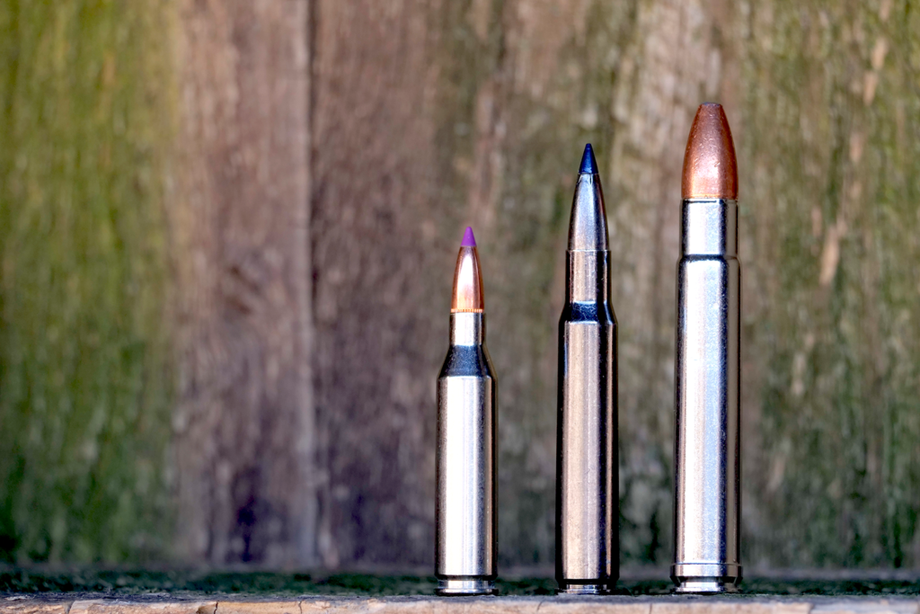 three types of ammo used in African hunting.