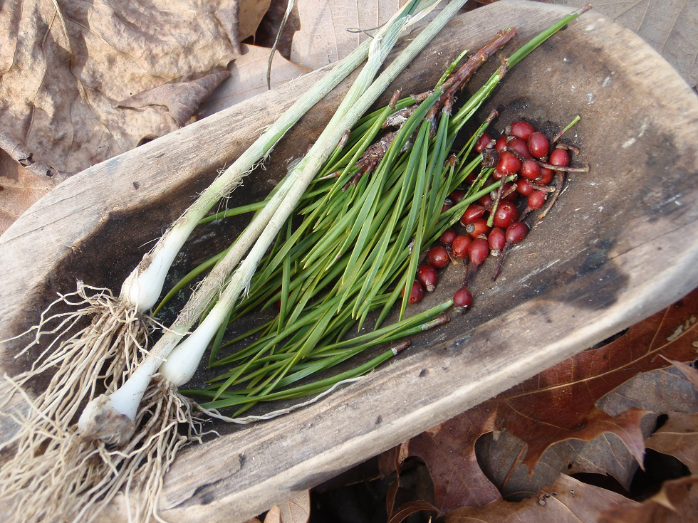A wooden bowl of herbs, onions, and wild berries.