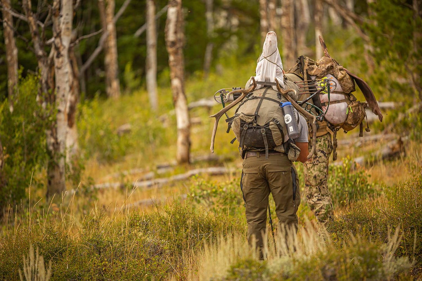 Hunting guides in a forest.