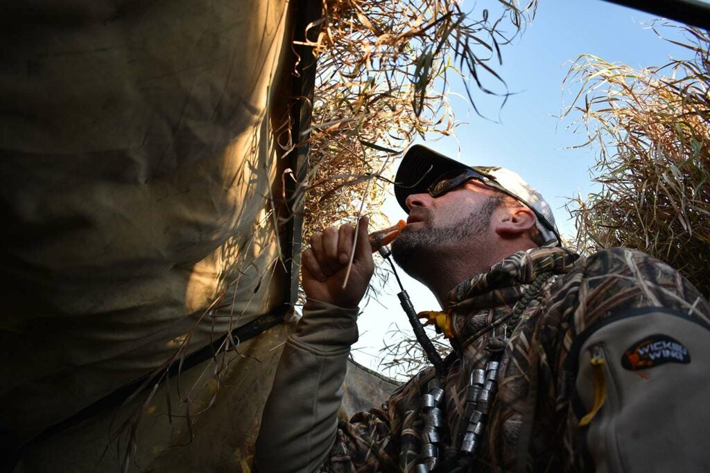 A hunter calling ducks in the woods.