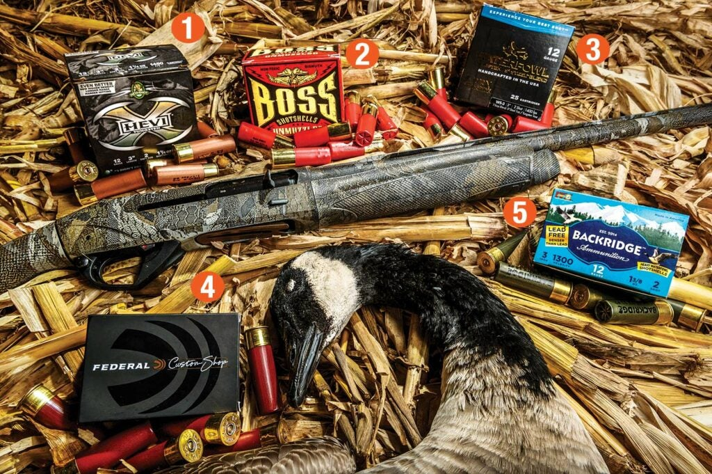 A collection of custom shotshell ammo used in Canada goose hunting.