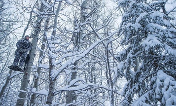 How to Hunt Winter Whitetails Without Freezing to Death