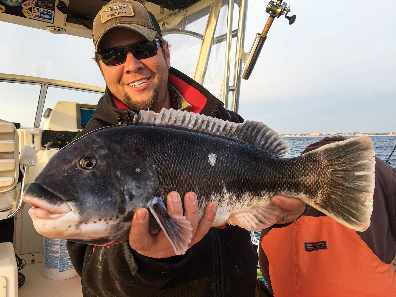 Joe Cermele holding a blackfish caught off the New Jersey coast.