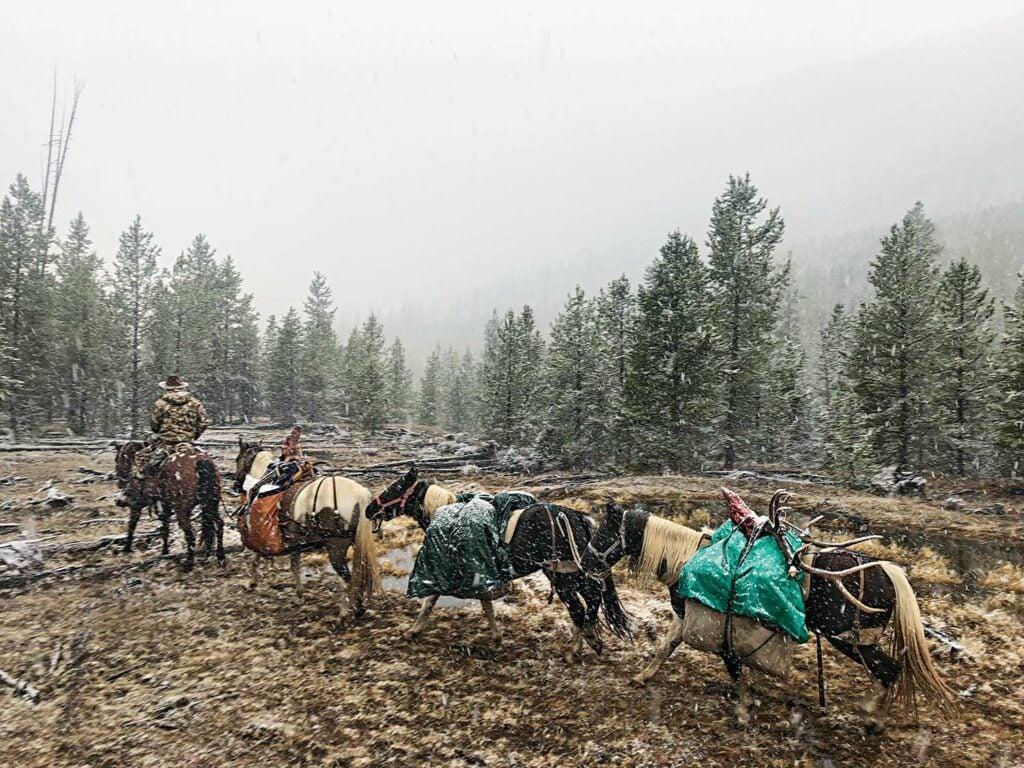 A caravan of hunters in the snow while hunting bull elk.