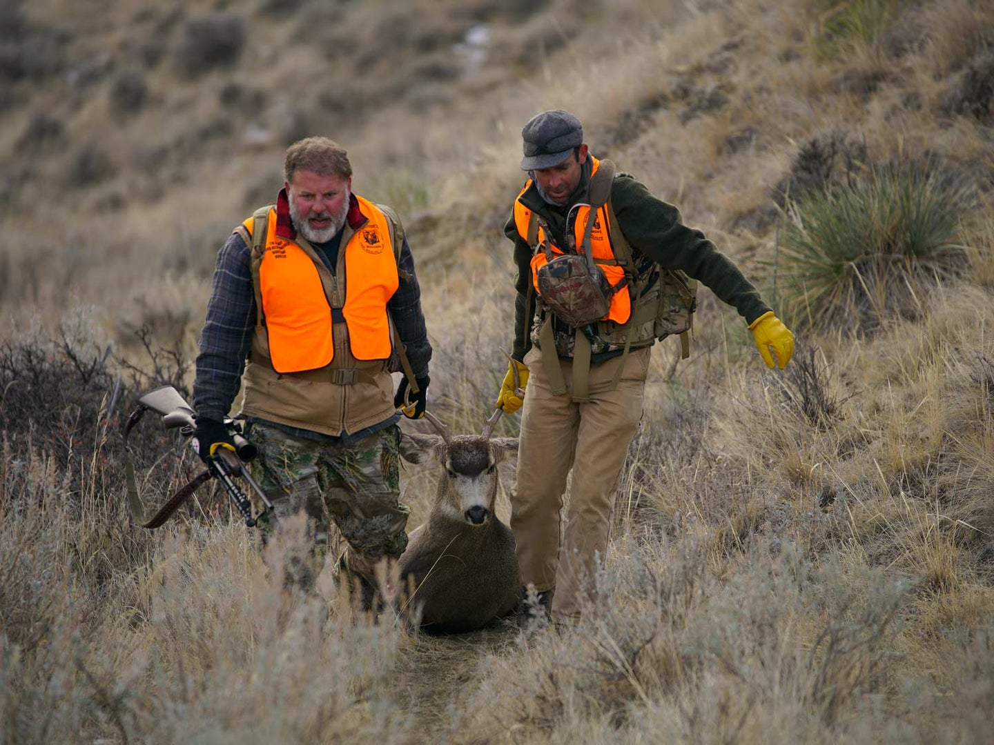 Two hunters dragging a deer through a field.