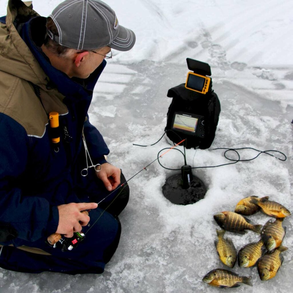 Angler ice fishing for bluegill.