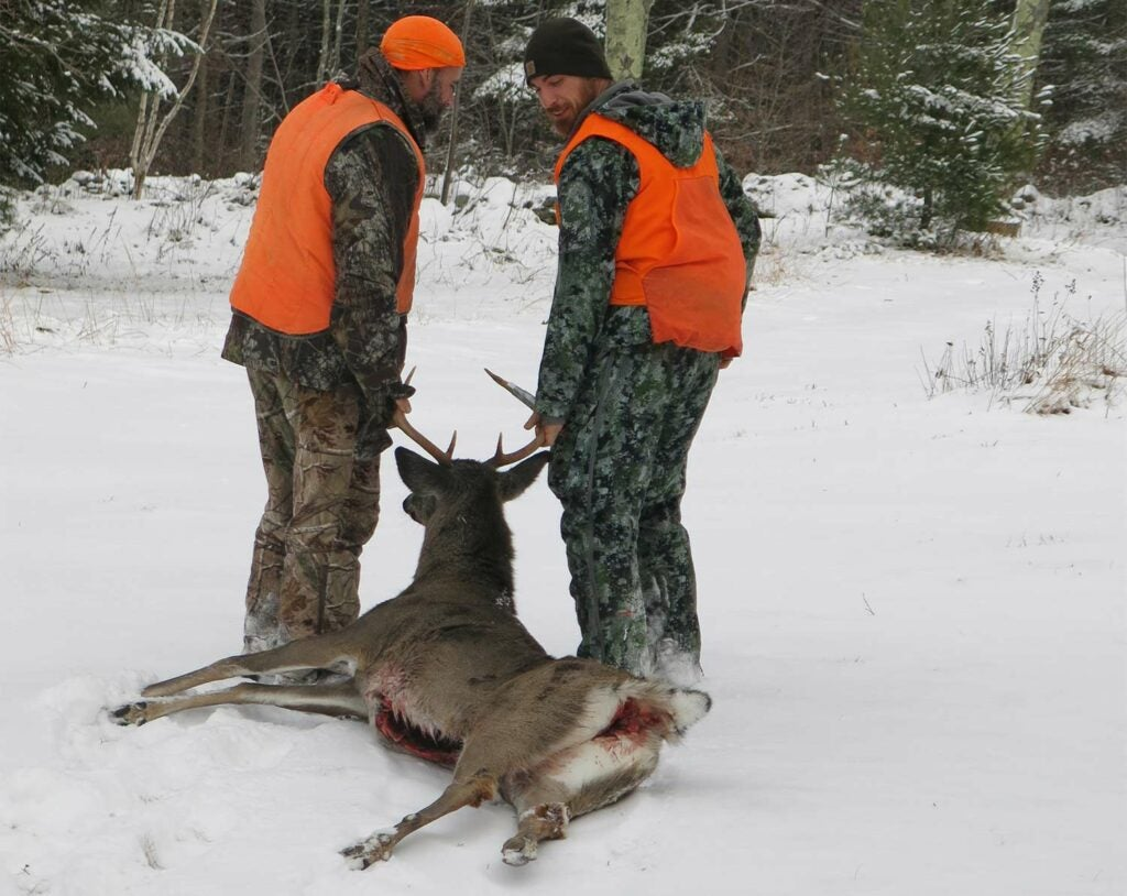 This New England buck was taken in a recently logged ash cut.