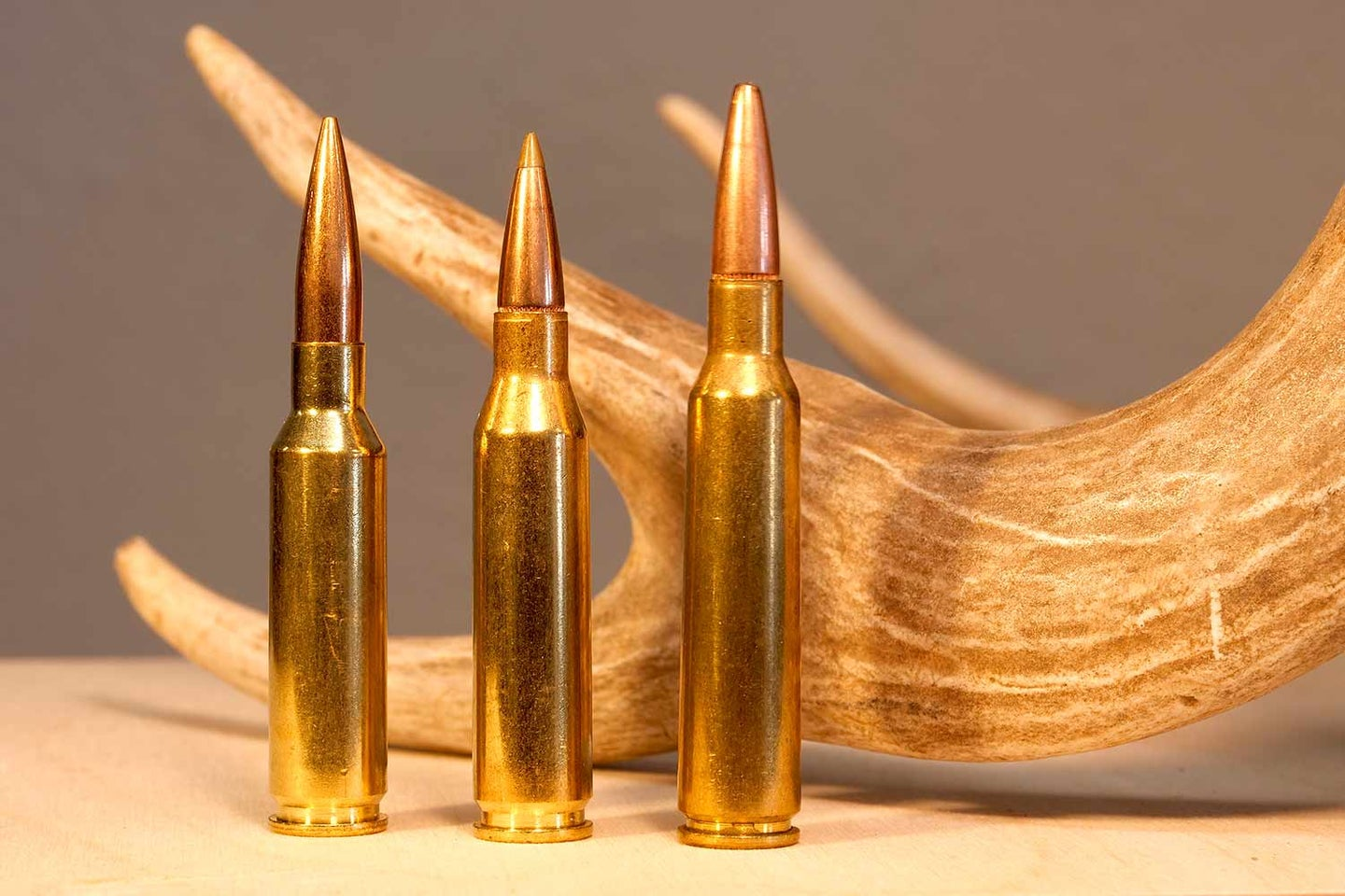 Three 6.5 ammo by an antler.