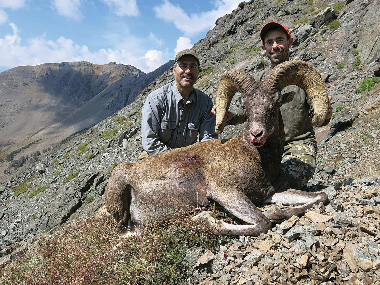 Two hunters kneeling behind Wyoming ram.