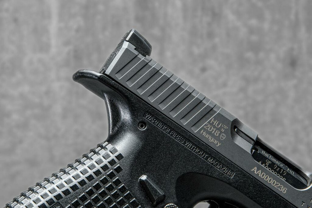 Archon Type B Rear sight and grip.